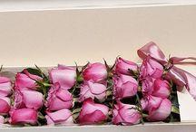 Flower in box / Flower in box