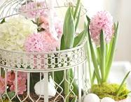 (Jahreszeiten) Spring-Time