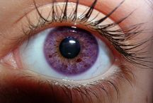 Eye Colors - Guide