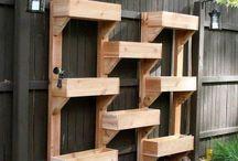 Vertical Gardens & Planter boxes