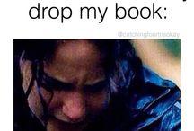 fangirls book