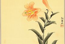 Woodblock prints. Flowers/Birds/Fish/Insects