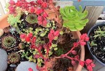 artful garden / beautiful + artful garden ideas and inspiration