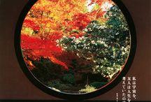 ヒロセの行きたい京都!!