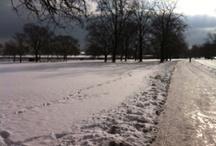 Views from my running routes / by Sarah Robb O'Hagan