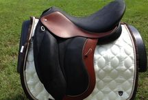 Equine Saddles / Broad collection of saddles for all types of Equestrian Needs.