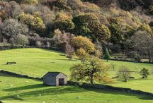 XVIII countryside