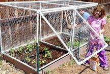 Garden enclosures