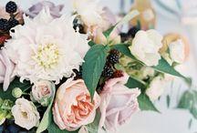 M+S Wedding