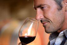 Apprendre le vin / Histoire, fabrication, vignes et cépages, art de la dégustation, glossaire du vin.