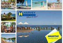 Harvey World Travel Highway / We provide leisure travel management, corporate travel portfolio management, and group tour management as well as the first Club Med store within a store AND an in-house Visa service.