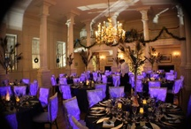 Corporate Events / Some of the corporate Events we have done