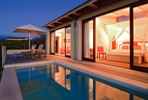 Romance and Honeymoons / by Grootbos Private Nature Reserve