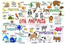 clases de espanol