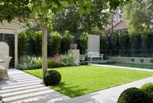 Trädgård senare