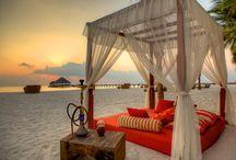 KUMA Lounge / Design inspiration board for international, chic island hookah lounge and bar.