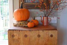 Pumpkin's Story