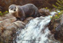 Otter Painting (Выдры в живописи)
