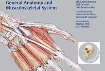 Kindle eBooks and Anatomy