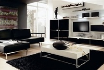 Modern Style / sleek, spacious, simple, and focuses on function and organization. basic geometry and clean lines in furniture, architecture and sculpture. pure colors:  black, white, and neutrals with vibrant primary colors.