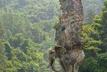 unbelievable statue