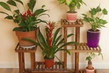 Kvetinové stojany