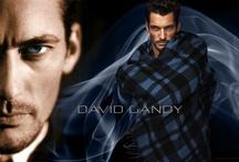 Ode to Dave Gandy / Super model! DG exclusive. / by Mari-j Carpenter