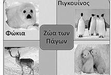 Πολικα ζώα!