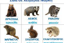 Ζώα-Φύση