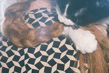 Animals / ffff