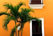 Puerto Rico love  / by Abby Velasco