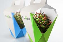 Flower Packaging / For inspiration only