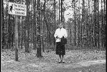 The Devils Tramping Ground / The mysterious camping grounds near Bennett, North Carolina