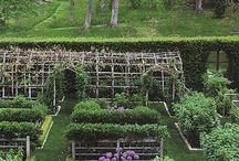 Potager / Kitchen garden / Keep 'em beautiful, keep 'em productive