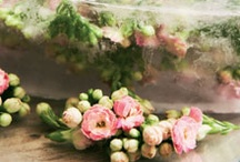 Resources / Useful links and pages of things you might find helpful regarding planning your wedding flowers
