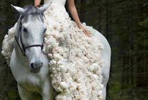 Woman - with here Horse