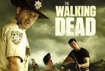 fave tv show- walking dead