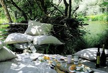 picnic / by Eden Jamison