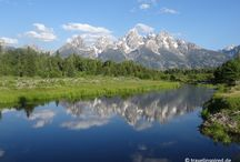 USA - Nationalparks / USA: Nationalparks / Wildlife / Rodtrip
