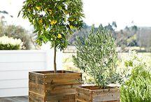 Gardening Pallets / Kuormalavatuunausta