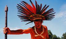 Turismo Nativo / Portal do maior programa de turismo nativo do Brasil.