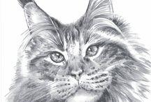 Kresby tužka z mé dílny