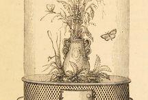 Victorian Engravings
