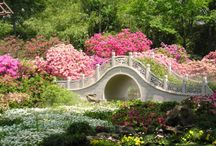 Enchanted Gardens / Truly magical gardens. I could be utterly content here. / by Loretta Cannon Proctor