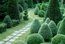 town gardens ideas / lots of great ideas to steal when creating your own town garden