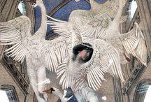 Bird Forms - ART