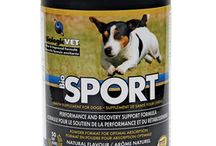 BiologicVET - Health Supplements for Dogs and Cats / We are proud to provide your dogs and cats with the best that nutritional science and nature's wholeness has to offer