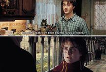 High sassy Harry