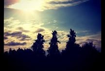 Instagram / Some shots I've taken with Instagram