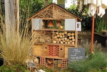 Gardening ✿ Critters ✿ Bugs / Lets Make Our Garden Comfy for Critters and Bugs! :0) Or use a natural way to make them leave!